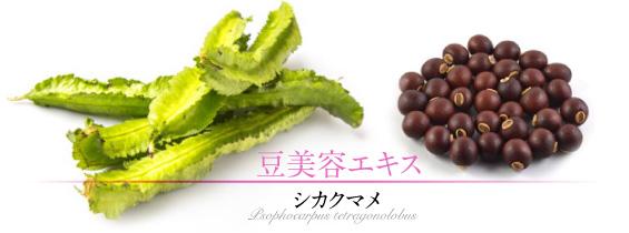 リバイタルグラナスの豆美容エキス