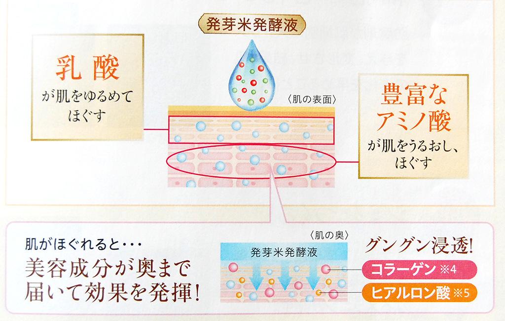 ビューティーブーケ発芽米発酵液説明